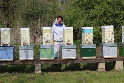 apiculteur mons
